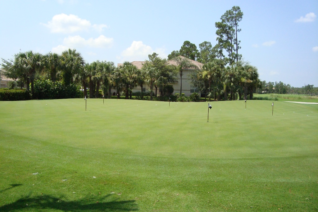 Golf course at Forest Glen in Naples, Florida.